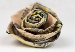 How To Make An Origami Rose Out Of Money How To Make A Money Origami Rose Out Of Dollar Bills Easy