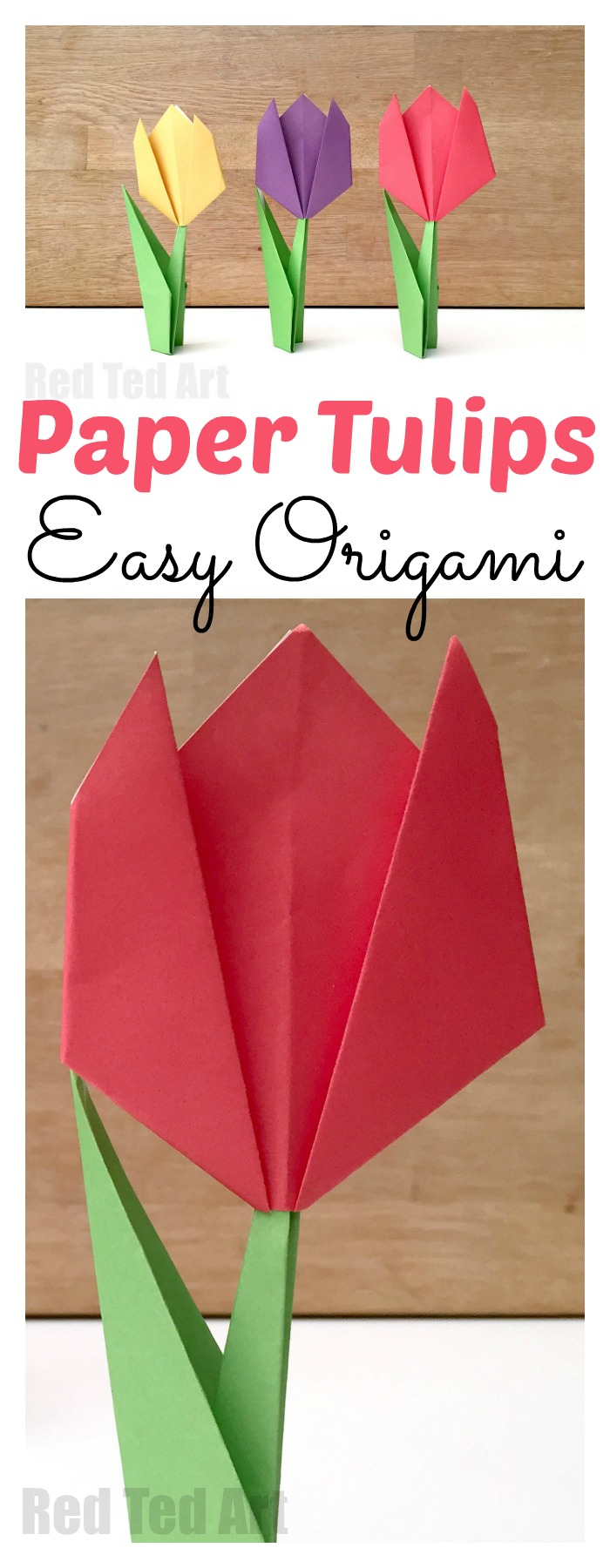 How To Make An Origami Tulip Easy Paper Tulip Red Ted Art