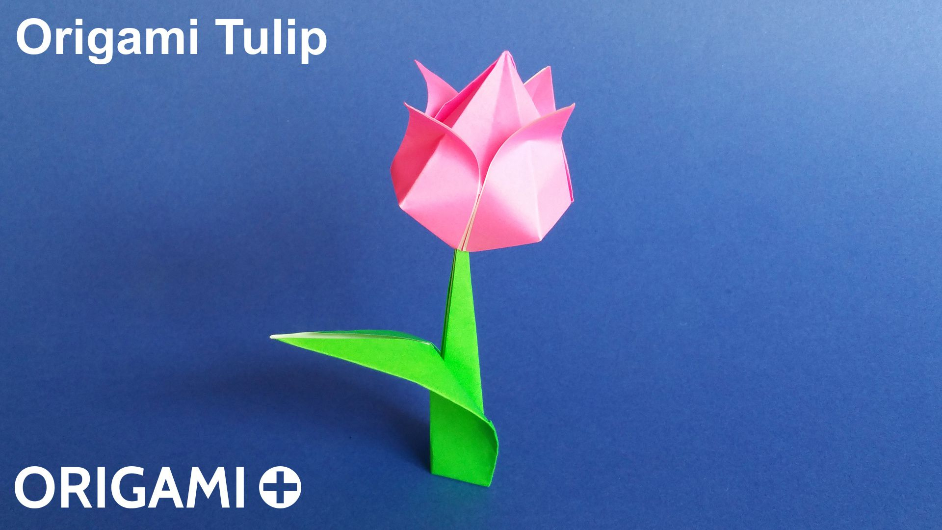 How To Make An Origami Tulip Origami Tulip