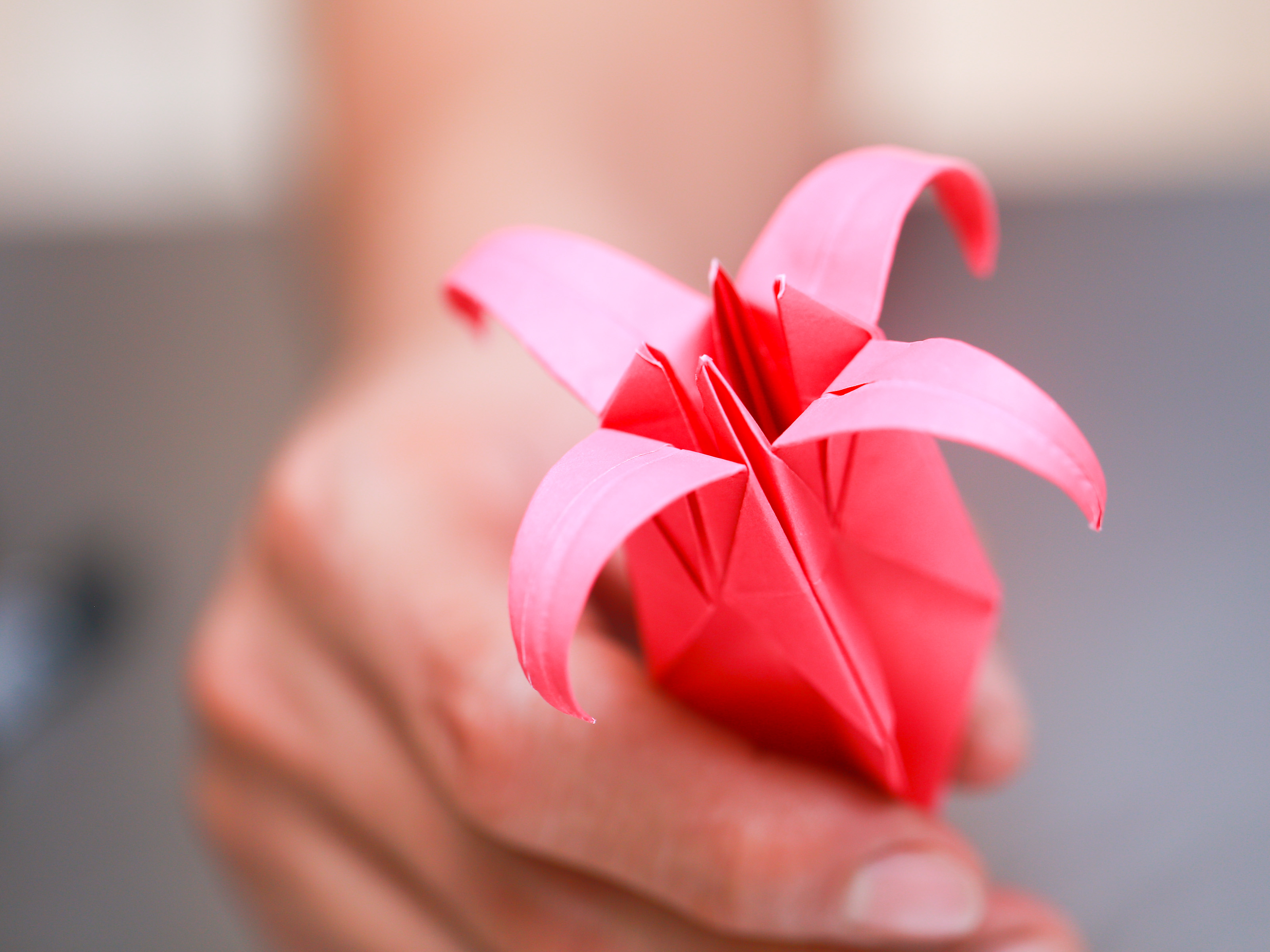 Origami Flower Star How To Fold An Origami Lily With Pictures Wikihow