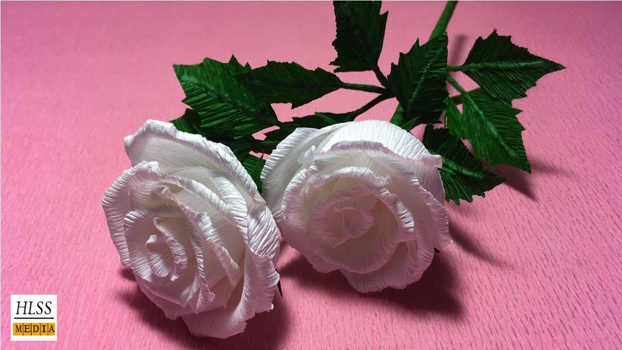Amazon.com: origami rose paper flower valentine holiday gift for ... | 720x1280